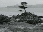 Okinawa Scenery 1954